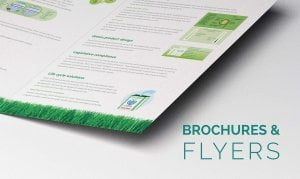 Brochures Flyers 300x179 - Brochures & Flyers