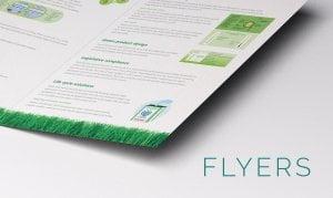 Flyers 1 300x179 - Flyers