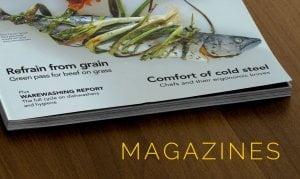 Magazines 1 300x179 - Magazines