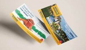 NBRE Brochure 300x174 - Nelson Bay Real Estate double sided DL