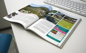 magazine 3 300x185 - magazine-3