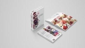 FOTW Book Layout 2 300x169 - FOTW-Book-Layout-2
